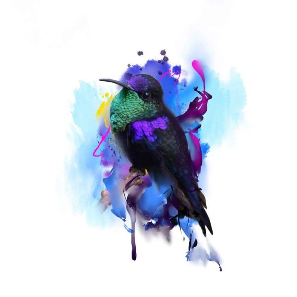 hummingbird watercolor tattoo design